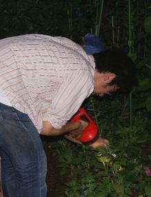20070707yotou