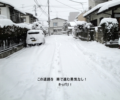 20100310009_3